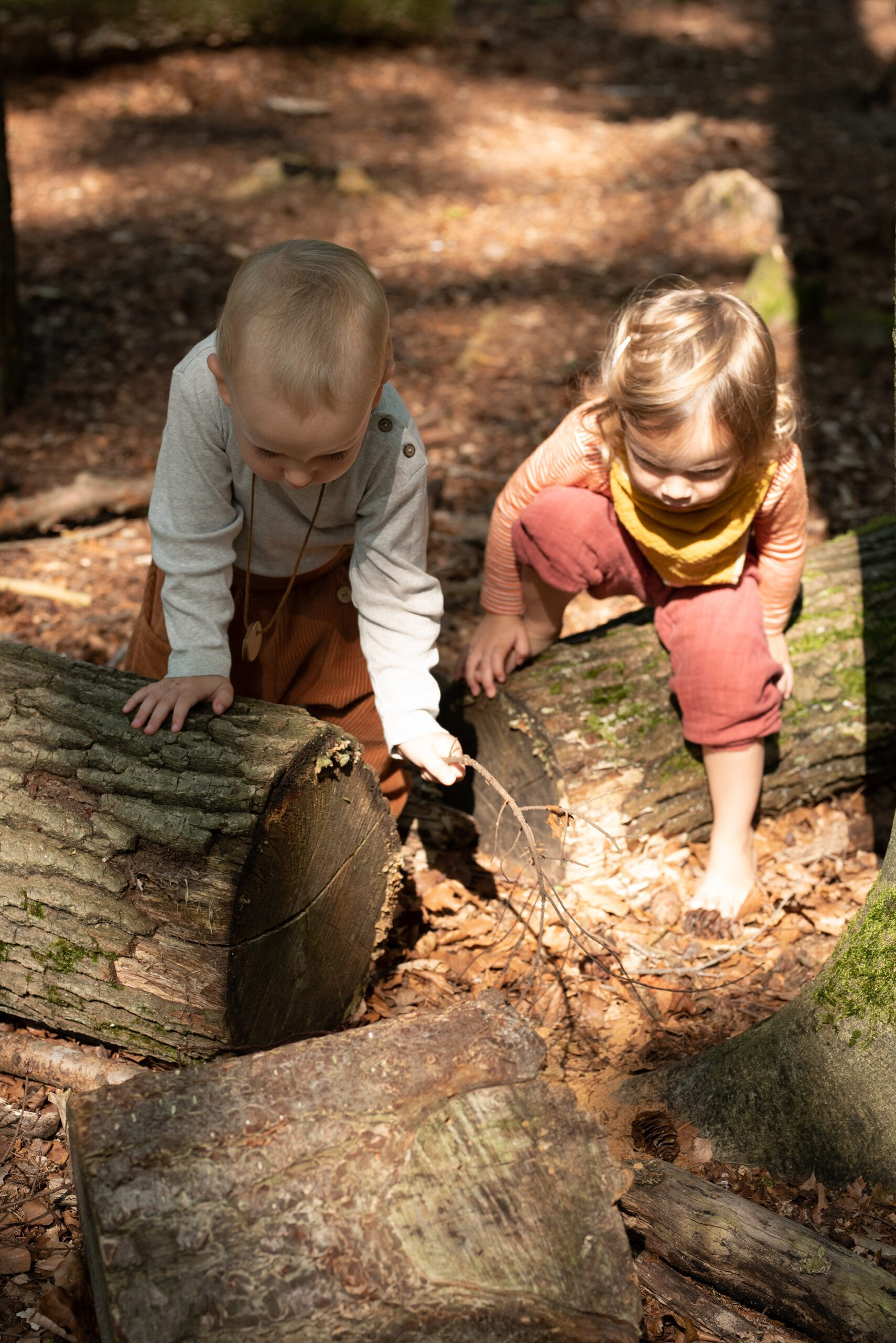 Naturkinder – Waldgruppe